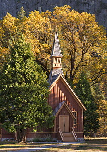 Yosemite Chapel with autumn trees, Yosemite Valley, California, USA. October 2013.  -  Adam Burton
