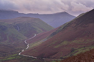 Newlands Pass during autumn. Mountain road connecting Newlands Valley with Buttermere, Lake District, Cumbria, England, UK. November 2013.  -  Adam Burton