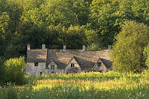 Arlington Row cottages in the Cotswold village of Bibury. Gloucestershire, England, UK. July 2014.  -  Adam Burton