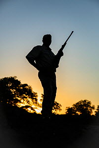 Ranger with rifle, silhouetted at sunset, Kruger National Park, Mpumalanga Province, South Africa.  -  Richard Du Toit