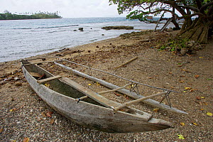 Traditional canoes on the beach. Papua New Guinea.  -  Tim  Laman
