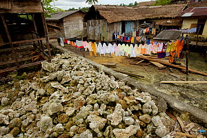 Laundry on lines and dead corals in Wakua Village, Aru Islands, Indonesia, September 2010. - Tim  Laman