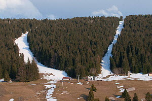 Ski slope upstream of Les Rousses which have degraded Capercaillie (Tetrao urogallus) habitat Jura, France. March. - Jean E. Roche