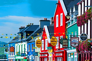 Colourful painted house facades in Dingle village, Dingle Peninsula, County Kerry, Ireland, Europe. September 2015.  -  Juan  Carlos Munoz