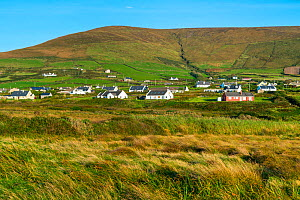 Housing on the Dunquin landscape, Dingle Peninsula, County Kerry, Ireland, Europe. September 2015.  -  Juan  Carlos Munoz