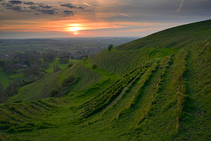 Sunset over Hambledon Hill Iron age Hill fort, Dorset, England, UK. April 2014.  -  Peter  Lewis