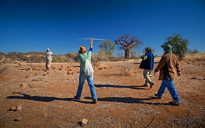 Researchers from the Endangered Wildlife Trust use radio telemetry equipment to track African wild dogs (Lycaon pictus) on foot with tourists on Venetia Limpopo Nature Reserve,  Limpopo Province, Sout...  -  Neil Aldridge