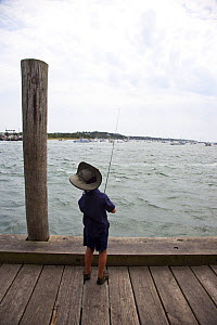 Child fishing from pier, Martha's Vineyard docks and harbour.  Massachusetts, USA, August 2011.  -  Billy  Black