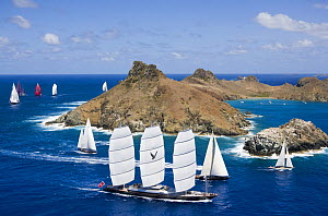 Maltese Falcon superyacht racing in the St Barths Bucket, West Indies, March 2009.  -  Billy  Black