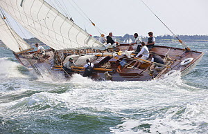 Spartan at the Classic Yacht Regatta 2011 in Newport, Rhode Island, USA. September 2011.  -  Billy  Black