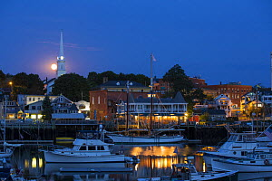 Camden harbour at twilight, with small boats docked, Maine, USA, August 2012.  -  Billy  Black