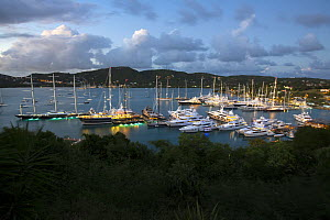 Boats moored in Falmouth Harbor, Antigua. December 2012.  -  Billy  Black