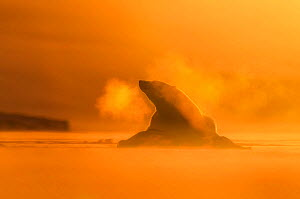 Polar bear (Ursus maritimus) at dawn with breath backlit, Svalbard, Norway, March. Highly commended in the Mammals category of the GDT Awards Competition 2016.  -  Ole  Jorgen Liodden