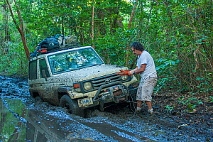 4x4 drive stuck in the mud on the track to Nancite, The driver is using a winch to pull the vehicle out of the mud. Santa Rosa National Park, Costa Rica. November 2010.  -  Huw Cordey