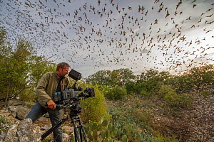 Wildlife cameraman, Mat Aeberhard, filming Mexican free-tailed bats (Tadarida brasiliensis) emerging from Bracken Cave, Texas. Bracken Cave is the summertime home of over 15 milions bats, making it th...  -  Huw Cordey