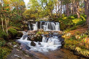 Alt Ruadh river flowing through woodland, Glenfeshie, Cairngorms National Park, Scotland, UK, October 2013. - SCOTLAND: The Big Picture