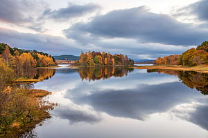 Autumn colours and stormy clouds reflected in the calm waters of Loch Insh, Cairngorms National Park, Scotland, UK, November 2015. - SCOTLAND: The Big Picture