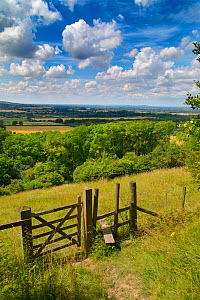 Stile and footpath, Aldbury Nowers Nature Reserve, the Chilterns, Hertfordshire, UK, July  -  Ernie  Janes