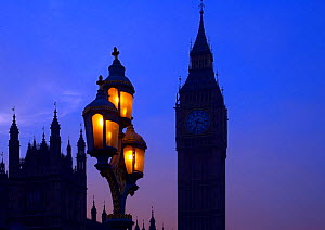 Street lighting, Houses of Parliament and Big Ben silhouetted, Westminster, London, England, UK, November.  -  Ernie  Janes