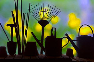 RF- Gardening tools silhouettes against garden flowers. (This image may be licensed either as rights managed or royalty free.)  -  Ernie  Janes