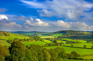 RF- Hambleden Valley, Buckinghamshire, UK, October (This image may be licensed either as rights managed or royalty free.)  -  Ernie  Janes