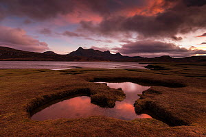 Saltmarsh exposed by low tide at sunset with view to Ben Loyal, Kyle of Tongue, Sutherland, Scotland, UK, December. - SCOTLAND: The Big Picture