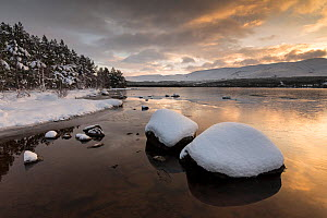 Loch Morlich with wintry view to Cairngorm, Glenmore, Cairngorms National Park, Scotland, UK, December 2014.  -  SCOTLAND: The Big Picture