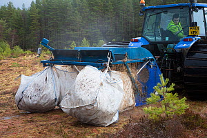 Machine collecting moss brash to distribute on bare peat as part of peatland restoration project, Inshriach, Glenfeshie, Cairngorms National Park, Scotland, UK, January 2015.  -  SCOTLAND: The Big Picture