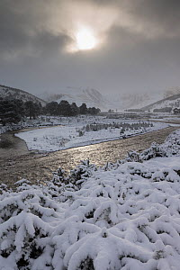 Braided channel of the River Feshie in winter, Glenfeshie, Cairngorms National Park, Scotland, January 2015. - SCOTLAND: The Big Picture