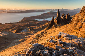 Old Man of Storr at dawn, Isle of Skye, Inner Hebrides, Scotland, UK, March 2015.  -  SCOTLAND: The Big Picture