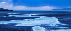 Tidal channels at dawn, Luskentyre, West Harris, Outer Hebrides, Scotland, UK, March 2015.  -  SCOTLAND: The Big Picture