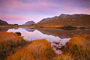 Beinn Eighe ridge and Liathach reflected in loch at dawn, Torridon, Wester Ross, Scotland, UK, October 2015. - SCOTLAND: The Big Picture