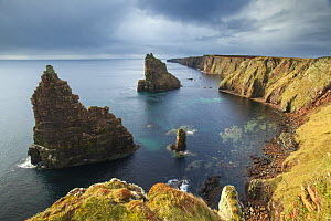 Sea stacks, Duncansby Head, John O Groats, Caithness, Scotland, UK, April 2015. - SCOTLAND: The Big Picture