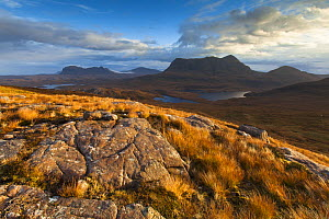 View from Stac Pollaidh towards Cul Mor and Suilven, Coigach and Assynt, Highlands, Scotland, UK, October 2013.  -  SCOTLAND: The Big Picture