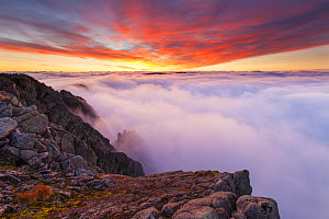 View from Braeriach at dawn with temperature inversion, Cairngorms National Park, Scotland, UK, September 2013.  -  SCOTLAND: The Big Picture