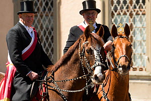 Two men on horseback during the  Blutritt (the right of blood) the largest European procession with about 3, 000 riders, Weingarten, Baden-Wurtemberg, Germany. May 2016. - Kristel  Richard