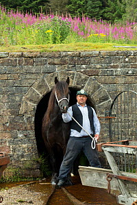 A lead miner and his  Dales pony, at Killhope Museum, near Cowshill, Upper Weardale, County Durham, England, UK, August 2016. Critically endangered breed.  -  Kristel  Richard