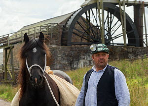A lead miner and his  Dales pony, in front of the waterwheel, at Killhope Museum, near Cowshill, Upper Weardale, County Durham, England. Critically Endangered breed.  -  Kristel  Richard