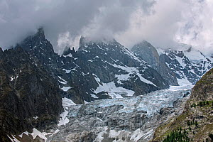 Aiguille Noire de Peuterey, part of the Peuterey ridge to the summit of Mont Blanc with its higher neighbour, the Aiguille Blanche de Peuterey seen from the Val Ferret valley, Graian Alps, Italy, June...  -  Philippe Clement
