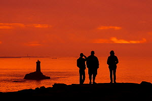 Tourists watching the lighthouse La Vieille in the strait Raz de Sein silhouetted against sunset at the Pointe du Raz, Plogoff, Finistere, Brittany, France, September. - Philippe Clement
