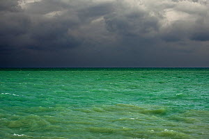 Dark rain clouds over emerald coloured sea water, Cotentin peninsula, Lower Normandy, France, October 2015.  -  Philippe Clement
