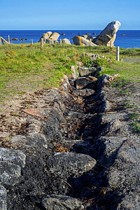 Open air oven to burn seaweed as part of process to produce iodine, Menez Hom along the Kerlouan coastline, Finistère, Britanny, France - Philippe Clement