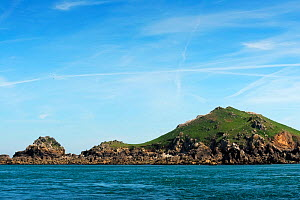 Ile Rouzic Natural Reserve, Sept Iles, Cotes d'Armor, Brittany, France, May 2016  -  Benjamin  Barthelemy