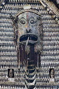 Traditional carvings on a Spirit House or Haus Tambaran. Yamok Village, East Sepik Province, Papua New Guinea. June  -  Nick Garbutt