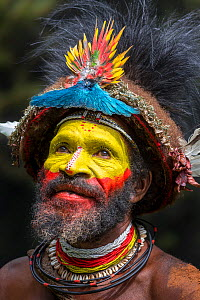 Haro Ngibe Huli Wigman in traditional / ceremonial dress with plumes of Birds of Paradise, dwarf cassowary, parrots and lorikeets.. Tari Valley, Papua New Guinea. June 2016. - Nick Garbutt