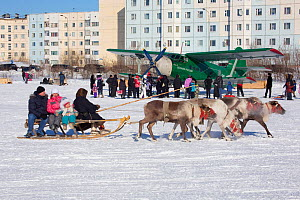 Tourists riding on a reindeer sled at Nenets reindeer herders' festival at Nadym. Yamal, Western Siberia, Russia - Bryan and Cherry Alexander