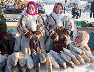 Nenets women selling fish at a stall during the reindeer herders' festival in Nadym. Yamal, Western Siberia, Russia - Bryan and Cherry Alexander