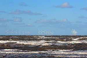 Burbo Bank windfarm  in Liverpool Bay viewed from New Brighton shore, Merseyside, UK, January.  -  Alan  Williams