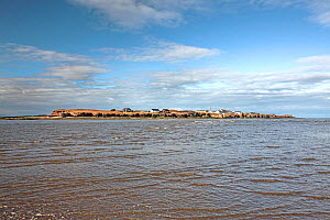Hilbre Island viewed from the from the east side with rising tide - situated in the mouth of River Dee Estuary. Wirral, UK February 2016. - Alan  Williams