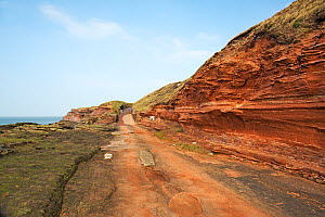 Hilbre Island - road and footpath onto the south end - situated in mouth of River Dee Estuary Wirral, UK, March. - Alan  Williams